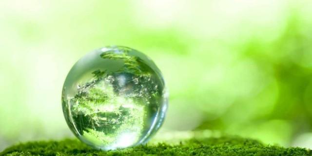 Zmogaus dovana Zemei