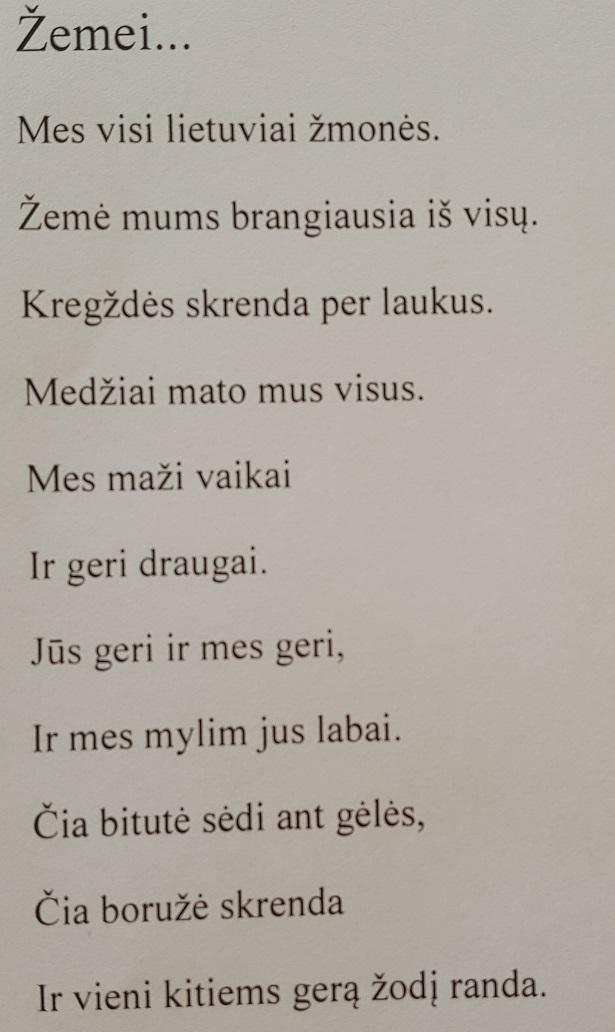 Kauno l–d Zilvitis (2)